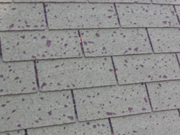 What Does Hail Damage Look Like On A Roof Roofer911 Com