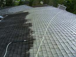 Seasonal roof cleaning