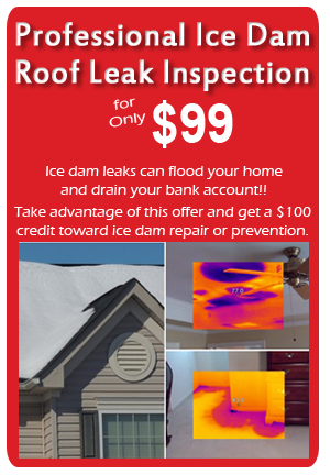 State Inspection Coupon >> Professional Ice Dam Roof Leak Inspection for Only $99 ...