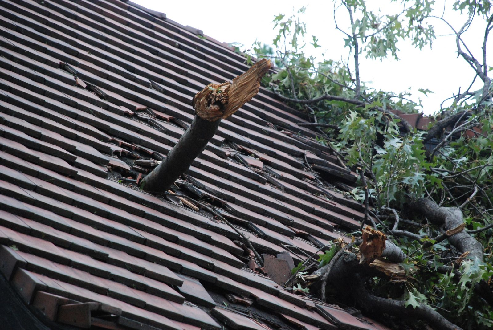 Have You Checked Your Roof For Any Storm Damage Yet